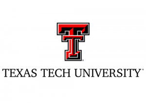 How to Use the Blackboard TTU Login