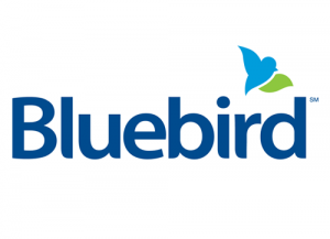 BlueBird American Express Login Guide